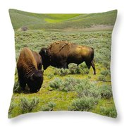 Two Bison Throw Pillow