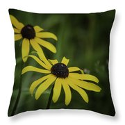 Two Black Eyes On The Macomb Orchard Trails Throw Pillow