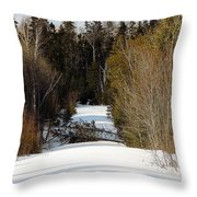 Two Blown Over Throw Pillow