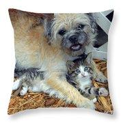 Two Buddies  Throw Pillow