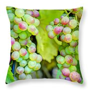 Two Bunches Throw Pillow