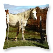 Two Children Admire Horses Throw Pillow