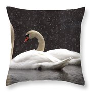 Two Christmas Swans A Swimming Throw Pillow