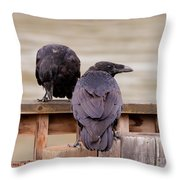Two Common Ravens Corvus Corax Interacting Throw Pillow