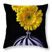 Two Daises In Striped Vase Throw Pillow