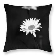 Two Daisies Throw Pillow by Sabrina L Ryan