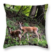 Two Deer Throw Pillow