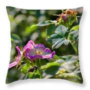 Two Dogroses Summer 2014 Throw Pillow