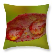 Two Droplets On A Leaf  Throw Pillow