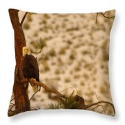 Two Eagles Hanging Out In Their Nest Throw Pillow