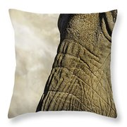 Two Elephants' Eyes Throw Pillow
