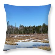 Two Geese Flying Throw Pillow
