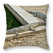 Two Gharial Crocodiles In Gharial Conservation Breeding Center In Chitwan Np-nepal   Throw Pillow
