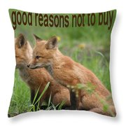 Two Good Reasons Not To Buy Fur Throw Pillow