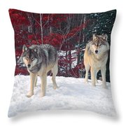 Two Gray Wolves Throw Pillow