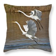 Two Greater Egrets  Throw Pillow