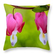 Two Hearts Valentine's Day Throw Pillow
