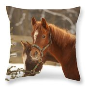Two Horses In Winter Day Throw Pillow