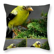 Two In The Bush Throw Pillow