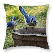 Two Jays Throw Pillow
