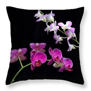 Two Kind Of Orchid Flower Throw Pillow