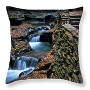 Two Kinds Of Steps Throw Pillow by Frozen in Time Fine Art Photography