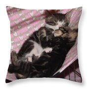 Two Kittens Sleeping Throw Pillow