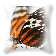 Two Large Tiger Butterflies Throw Pillow