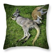 Two Lazy Kangaroos Lying Down Throw Pillow
