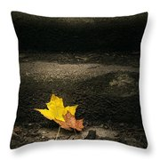 Two Leaves On A Staircase Throw Pillow