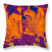 Two Lilies Gradient Throw Pillow