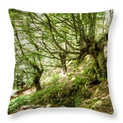 two little brothers Chasing Fairies in theBeech Forest on a summer day Throw Pillow