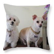 Two Little Dog Throw Pillow