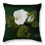 Two Lovely Lilies Throw Pillow