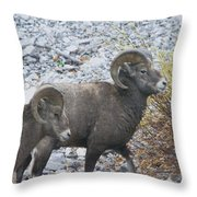 Two Male Rams Throw Pillow