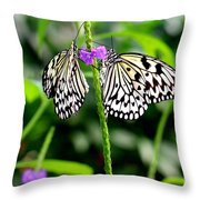 Two Paper Kite Or Rice Paper Or Large Tree Nymph Butterfly Also Known As Idea Leuconoe Throw Pillow