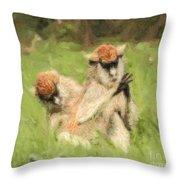Two Patas Monkeys Erythrocebus Patas Grooming Throw Pillow