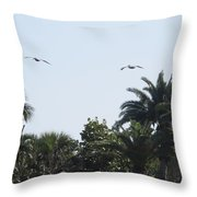Two Pelicans Throw Pillow