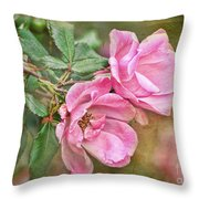 Two Pink Roses I  Blank Greeting Card Throw Pillow