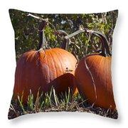 Two Pumpkins Throw Pillow