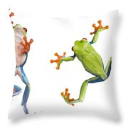 Two Red Eyed Tree Frogs Throw Pillow