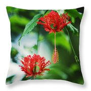 Two Red Hibiscus Throw Pillow