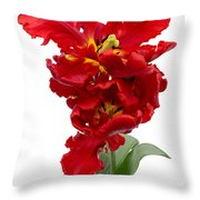 Two Red Parrot Tulips Throw Pillow