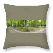 Two Roads Diverged Letchworth State Park Panorama Throw Pillow