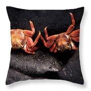 Two Sally Lightfoot Crabs Throw Pillow