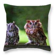 Two Screech Owls Throw Pillow