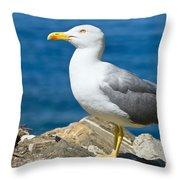 Two Seagull Throw Pillow