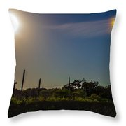 Two Shades Different Throw Pillow by Tyson Kinnison