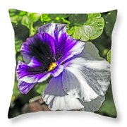 Two Shades Of Color Throw Pillow