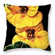 Two Shy Sisters Fractal Throw Pillow